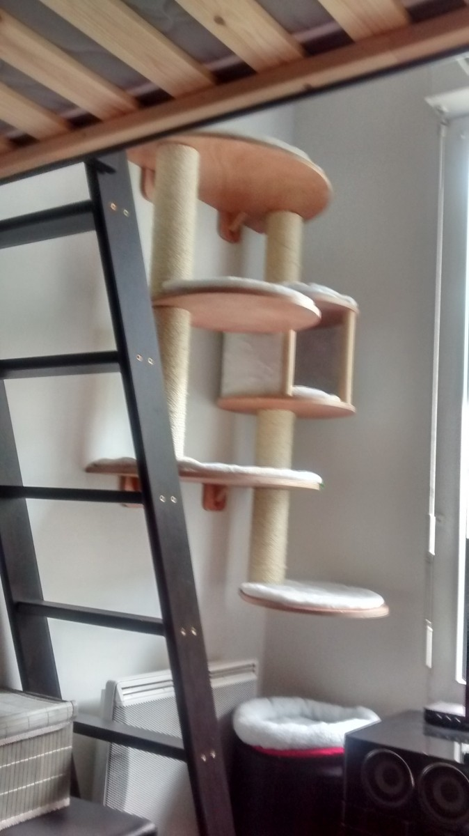 kratzbaum dolomit pro welcher an der wand zu befestigen. Black Bedroom Furniture Sets. Home Design Ideas
