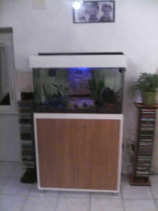 Aquarium set accent aqua 95l plus unterschrank nur 10 for Accent meuble la tuque