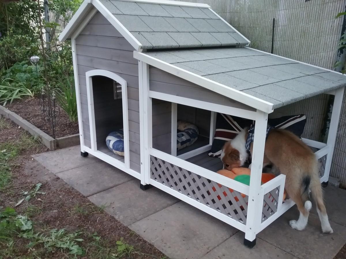 hundeh tte mit terrasse falco hundeh tten. Black Bedroom Furniture Sets. Home Design Ideas