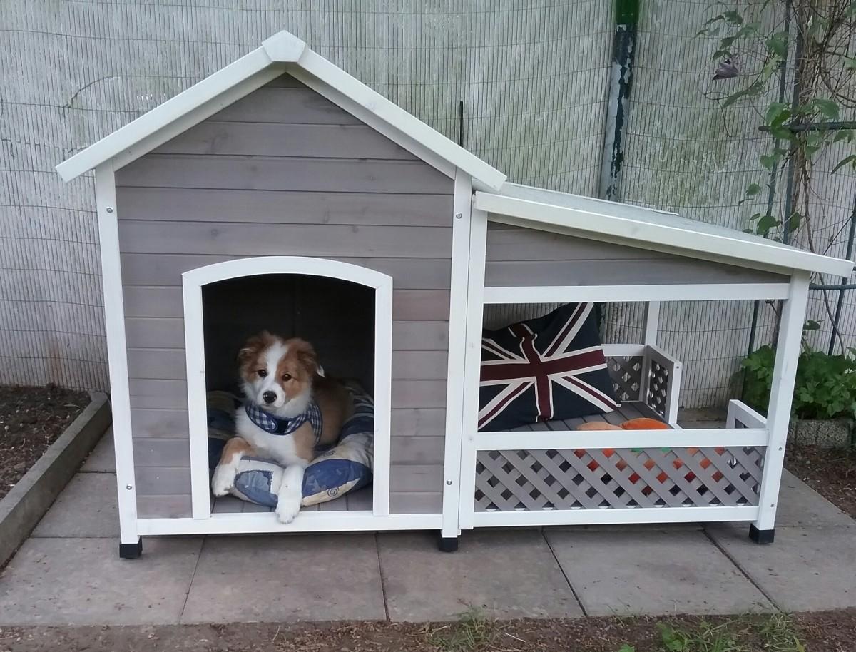 hundeh tte mit terrasse swalif. Black Bedroom Furniture Sets. Home Design Ideas